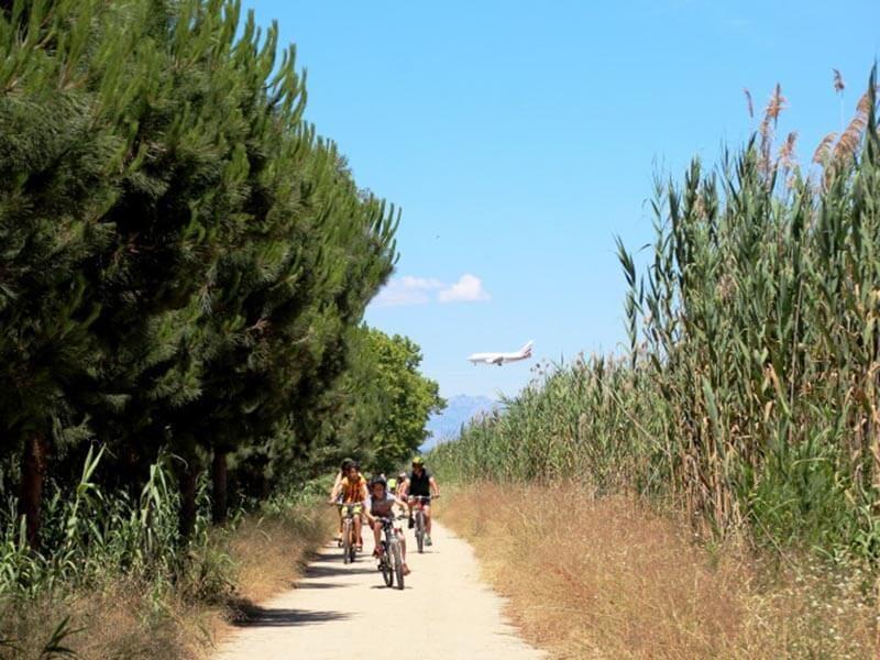 Ruta-en-bici-por-el-Delta-del-Llobregat-800x600